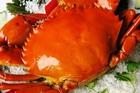 Chảo cua 'siêu to khổng lồ' lần đầu xuất hiện tại Cà Mau