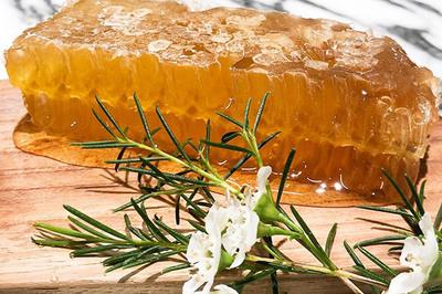 Bí mật đằng sau loại mật ong đắt nhất thế giới