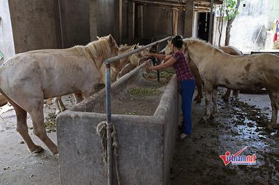 Hàng nghìn hộ dân ở Kiên Giang thoát nghèo vươn lên giàu nhờ học nghề nông