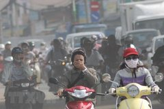 Pollution discussed at 17th meeting of HCMC People's Council
