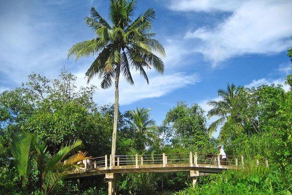 Thạnh Phú Đông đặt mục tiêu xã nông thôn mới vào năm 2020