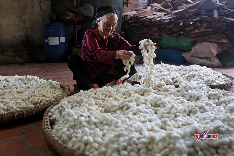 TPHCM có nhiều mô hình nông nghiệp hiệu quả do người dân được đào tạo nghề