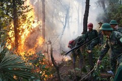 Man sentenced 7 years in prison for careless trash burning causing forest fire