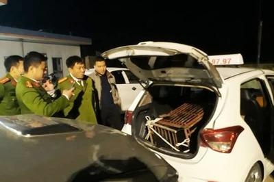 Tài xế taxi chở gấu quý hiếm, tính cước như chở người