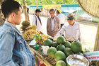 Fruit farms offer rural life experience