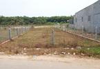 Hai Phong to review land violations