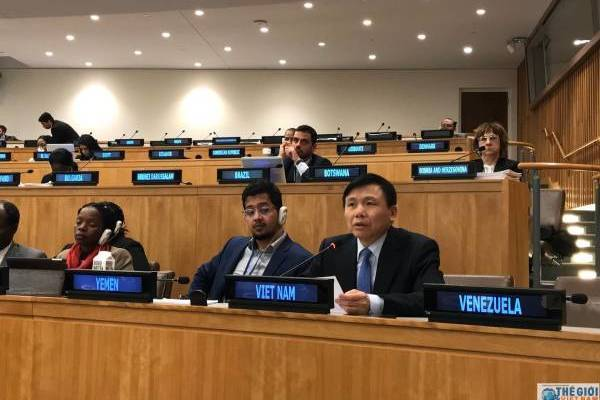 Vietnam participates in promoting and guaranteeing human rights at the Third Committee of the UN General Assembly