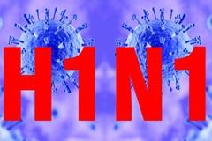 Bệnh nhi 27 tháng tử vong do cúm A/H1N1