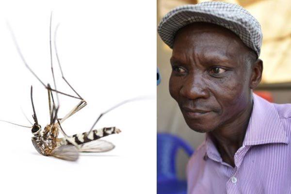 Nổi tiếng nhờ 'xì hơi' giết muỗi cách xa 6 mét