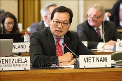 Vietnam's contributions to global human rights