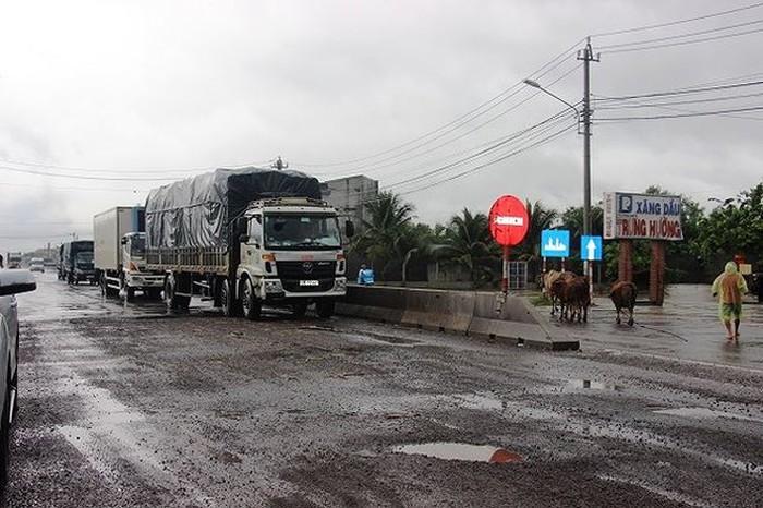 Hàng loạt sai phạm tại dự án mở rộng quốc lộ 1 tỉnh Bình Định, Phú Yên