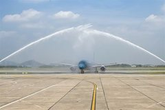 Vietnam's airlines to buy more aircraft to expand fleets