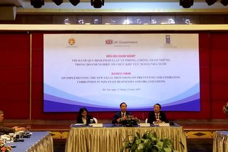 Vietnam under pressure to address corruption in private sector: UNDP
