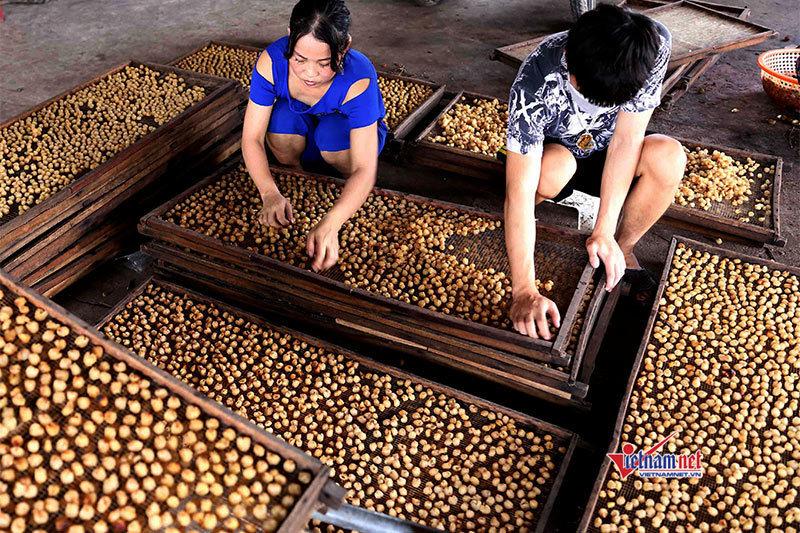 Trung bình mỗi năm hơn 4.000 lao động Tây Ninh được đào tạo nghề