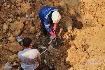Chủ tịch Hà Nội: Xử lý nghiêm việc chôn chất thải nguy hại ở Sóc Sơn