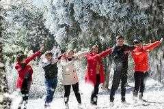 Giáng sinh check-in ở khu vườn châu Âu giữa lòng Hà Nội