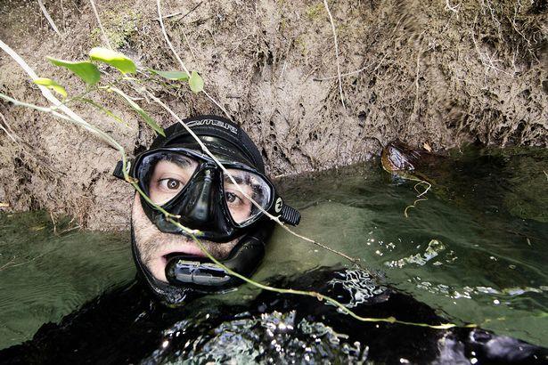 Nhiếp ảnh gia,liều mạng,tự sướng,trăn,anaconda,động vật,động vật hoang dã