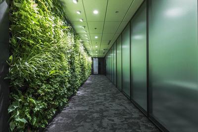Văn phòng xanh - khơi nguồn cảm hứng bất tận