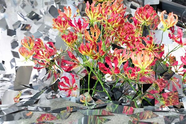 Thousands of exotic blooms on display at 'Japan in Flowers'