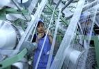 VN garment, textile export falls short of target but surplus impressive