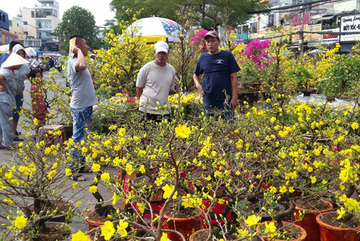 HCM City to open 170 flower markets during Tet