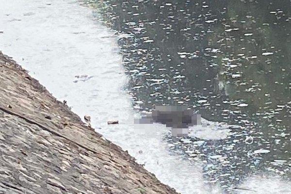 Thi thể người đàn ông nổi trên sông Kim Ngưu Hà Nội