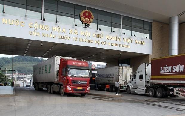 China resumes importing Vietnamese dragon fruit, bananas