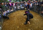 Mong ethnic people in northwest celebrate Tet festival