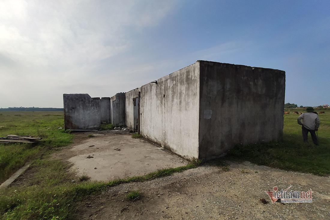 Dự án trồng chuối 4 triệu USD thất bại, 'ngửa tay' xin dân tiền thuê đất
