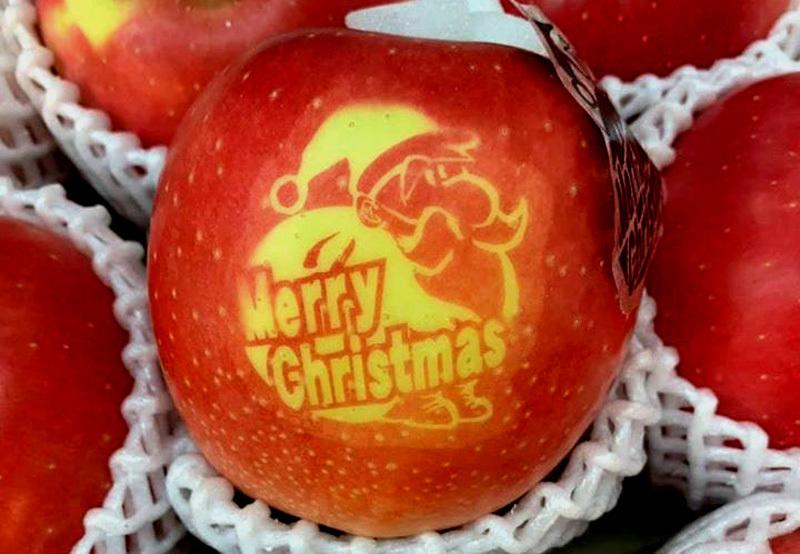 Táo Giáng sinh đỏ rực, 500 ngàn/quả mua tặng người thương