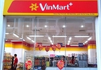 Vietnamese billionaires join hands to develop domestic retail network