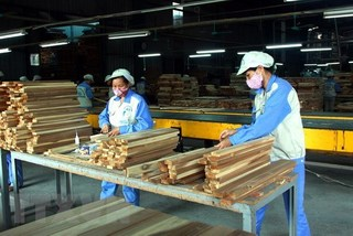 VN forestry export expected to hit record $11.3 billion in 2019