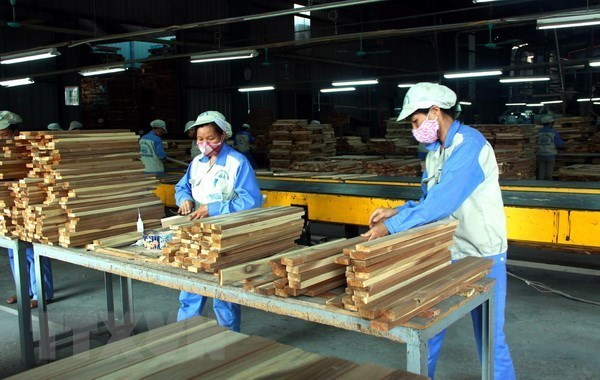 forestry sector,export,Deputy Minister of Agriculture and Rural Developme,trade surplus,he US,Japan,China,the European Union,the Republic of Korea
