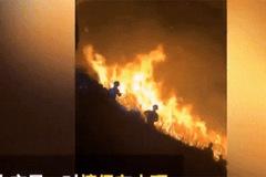 Dân Trung Quốc phẫn nộ với cặp đôi đốt pháo hoa thiêu rụi cánh rừng