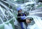 Private sector should bepillar of Vietnam economy: expert
