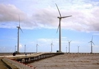 Wind power key to Vietnam's renewable power supply: experts
