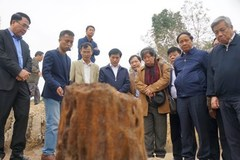 Bàn 'kế' nâng tầm bãi cọc gỗ Bạch Đằng do nông dân Hải Phòng phát hiện