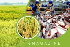 Hàng chất Việt Nam, hạt lúa ngon nhất thế giới, con cá ngang cơ hàng Mỹ