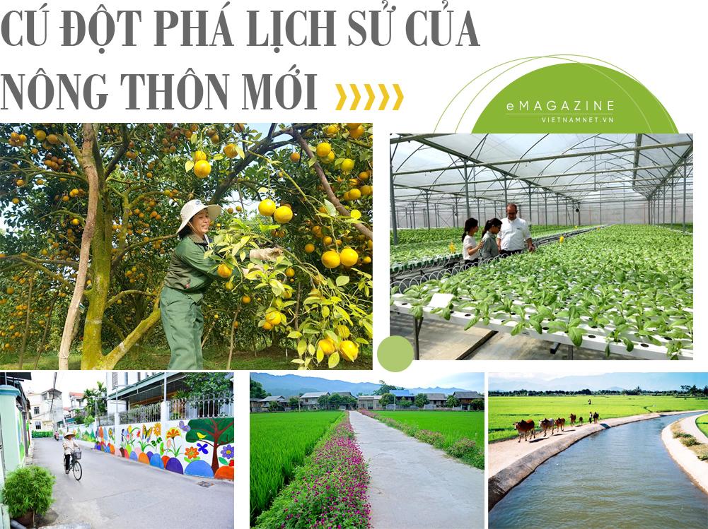 ngành nông nghiệp,xuất khẩu cá tra,nông thôn mới,xuất khẩu sữa,gạo việt nam,xuất khẩu gạo