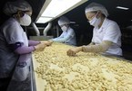 Vietnam targets US$4 billion from cashew exports in 2020