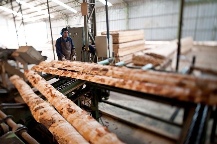 Wood industry seeks more material suppliers