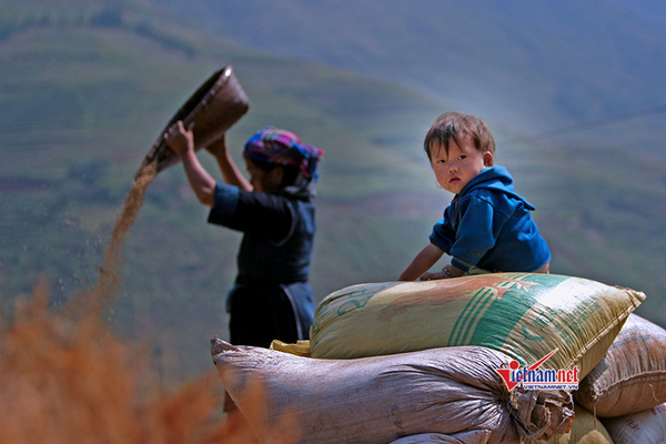 Food and clothes - the basis for ensuring human rights in ethnic minority and mountainous areas