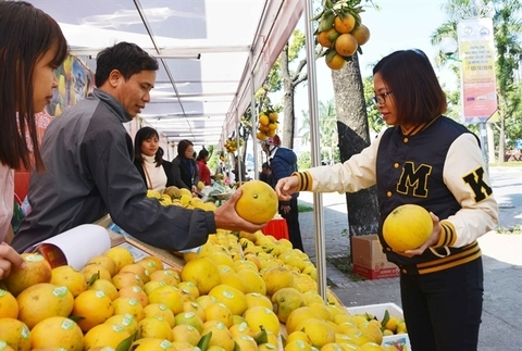 Trade promotion to focus $5.8m on key markets