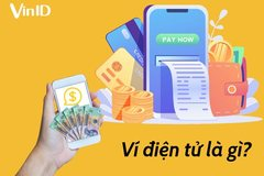Can e-wallets make a profit in Vietnam?