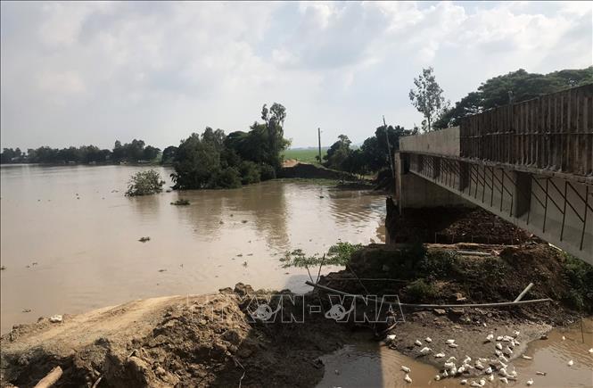 Mekong Delta,saltwater,landslide,Vietnam environment