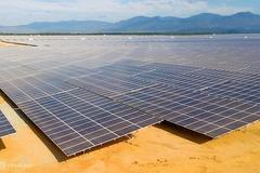Solar power investors 'ran fast, braked hard' in 2019
