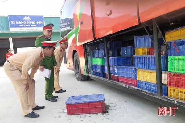 5 tonnes of wild animals found on bus in Ha Tinh