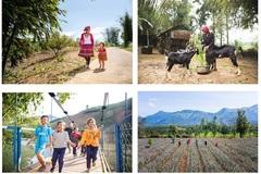 59.000 hộ nghèo và cận nghèo nhận được hỗ trợ giảm nghèo