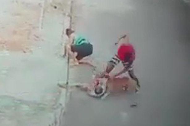 Thót tim cảnh cứu bé trai bị chó dữ tấn công