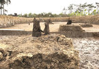 Ancient war trap shows great campaign by Tran army in 13th century